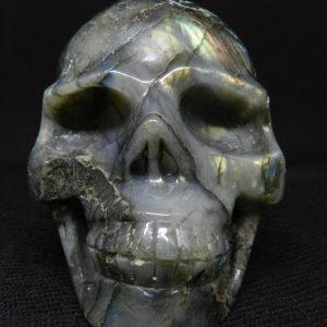 Face view of Labradorite skull