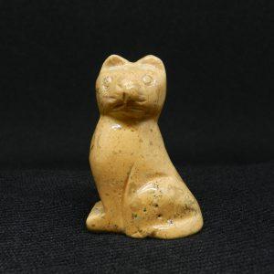 Full frame image of Jasper Cat