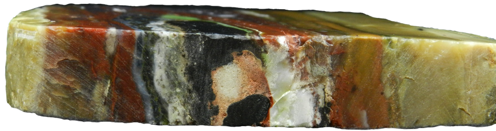 Close up side image of Petrified Wood with the background removed