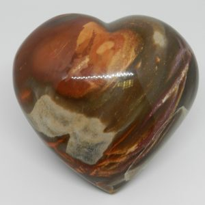Heart shaped petrified wood Jasper