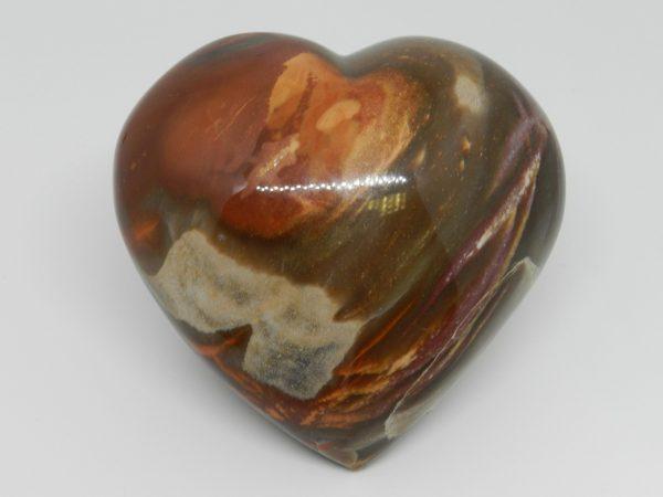 Heart shaped petrified wood Jasper