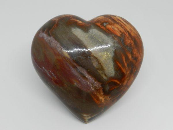 Petrified Wood Jasper Heart