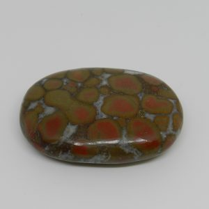 Polished King Cobra Jasper
