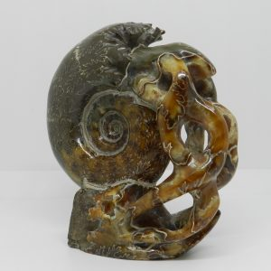 Carved Ammonite Sculpture