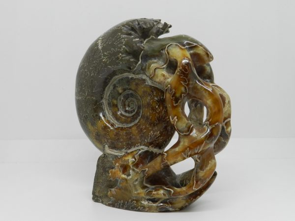 Carved Ammonite Sculpture