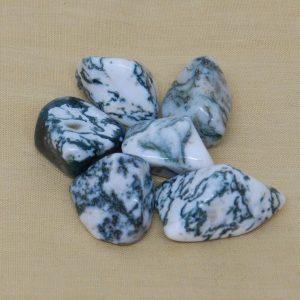 Tree Agate Tumblestones