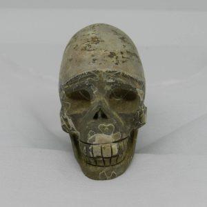 Ammonite Skull