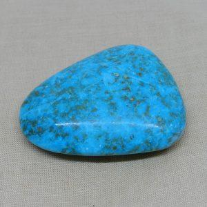 Turquoise Palmstone